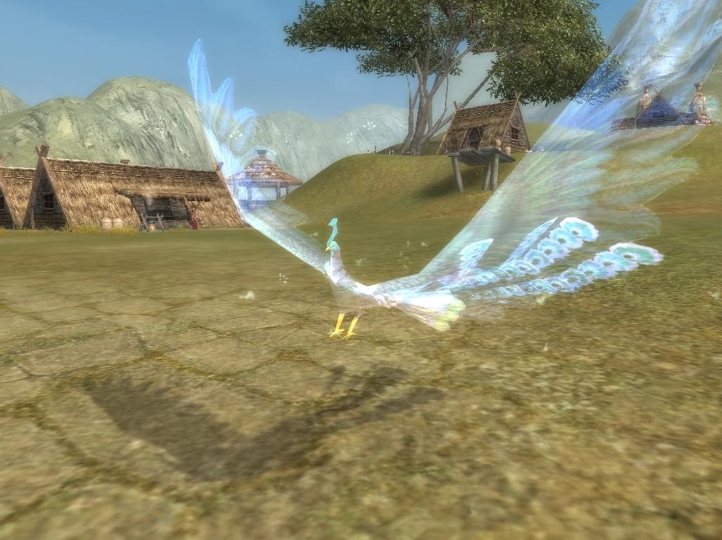 local phoenix